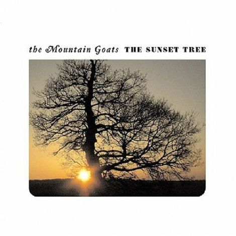 tmg-sunset_tree